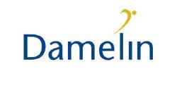 Damelin2